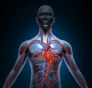 Shutterstock Periodontal Health Body